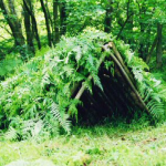 Shelters Using On-Hand Materials