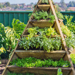 The Benefits of a Garden Pyramid