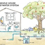 Making Good Use of Greywater on Your Property