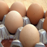 Egg Storage and the Myth of Refrigeration