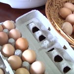 Dehydrating Eggs The Big Family Homestead Way