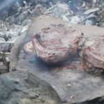 COOKING STEAK ON A STONE-OUTDOOR COOKING