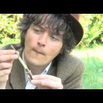 Make a Screaming Loud Whistle from a Sycamore Twig!