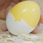 Getting Kids Involved in Prepping:  Scrambling an Egg Inside its Shell