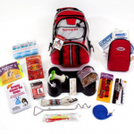 How to Put Together a Pet Survival Kit