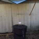 How to Build a Simple Rainwater Collector Without Gutters