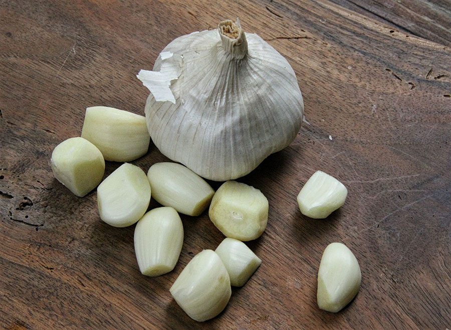garlic-bulb-and-cloves