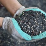 How to Boost Nutrient Levels in Soil Without Chemical Fertilizers