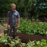 The Advantages of Using Garden Boxes