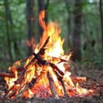 Simple Guide for Gathering Wood and Building a Fire